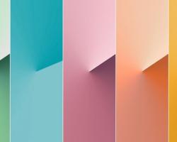 paleta-de-cores-2020